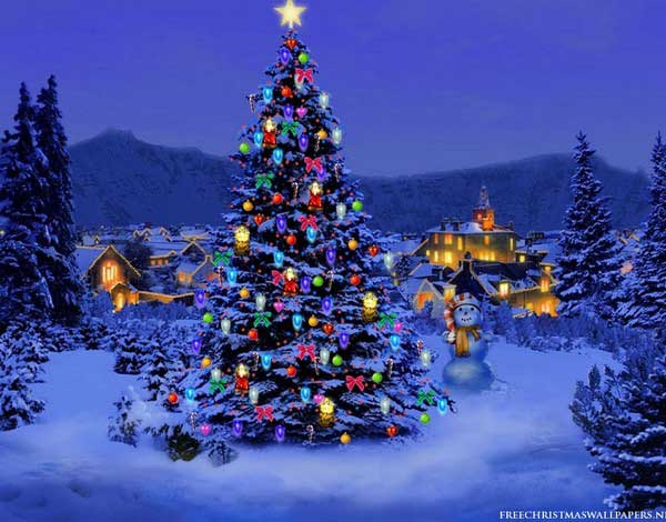600x470-Christmas-Tree-Nature1024-226431.jpg