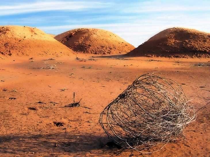 9ba5tumbleweed-empty-desert_png.jpg