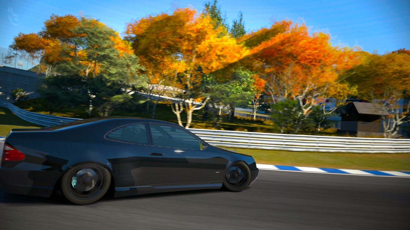 Autumn Ring_3.jpg