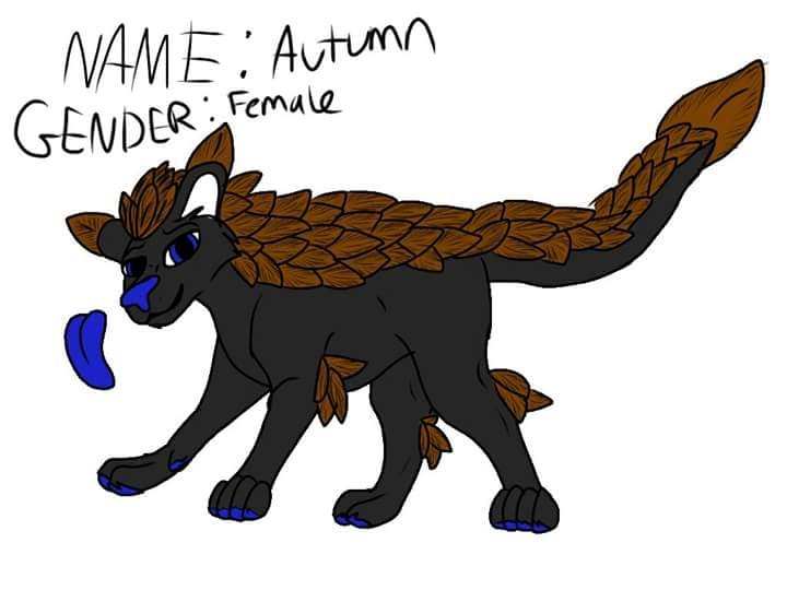 Autumn the feathered Panther.jpg