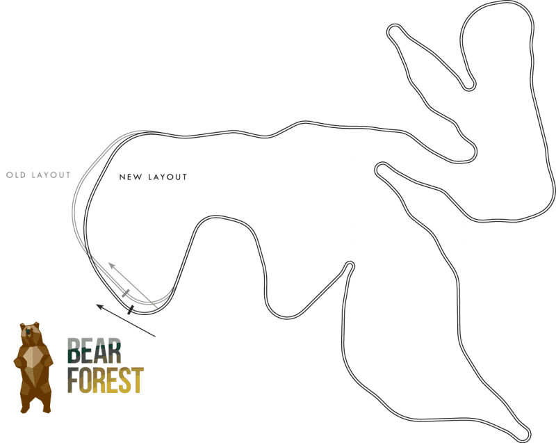 bear_forest_newLayout.png
