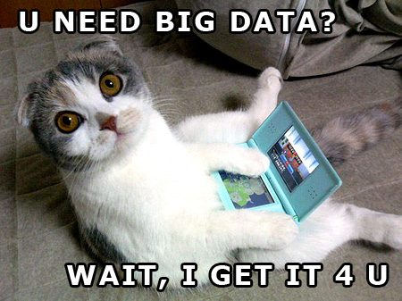 big-data-kitty.jpg