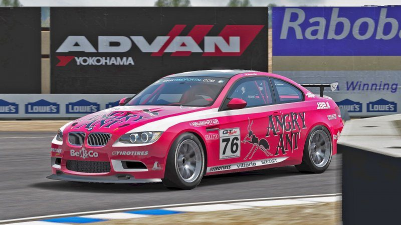 BMW M3 GT4 Angry Ant #76.jpeg