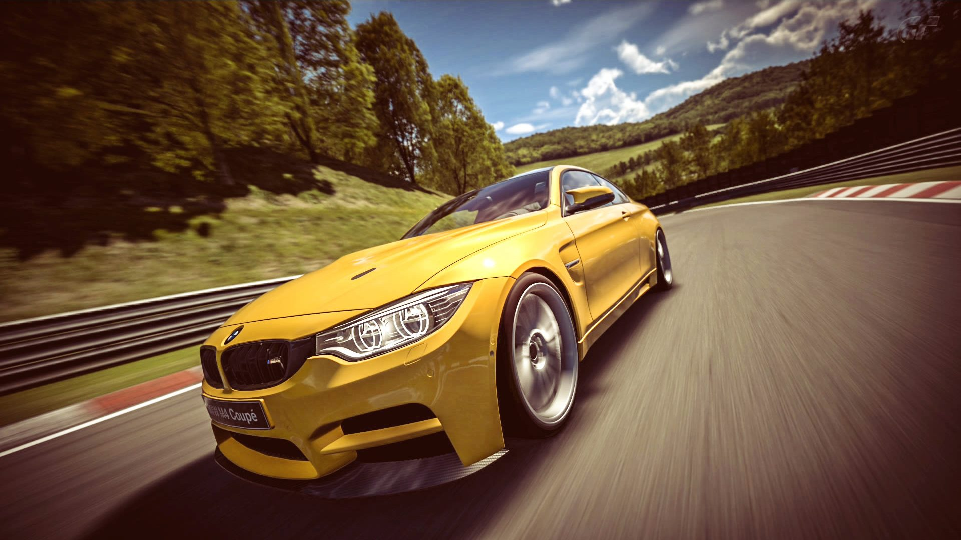 BMW_M4_Nurb_10.jpg