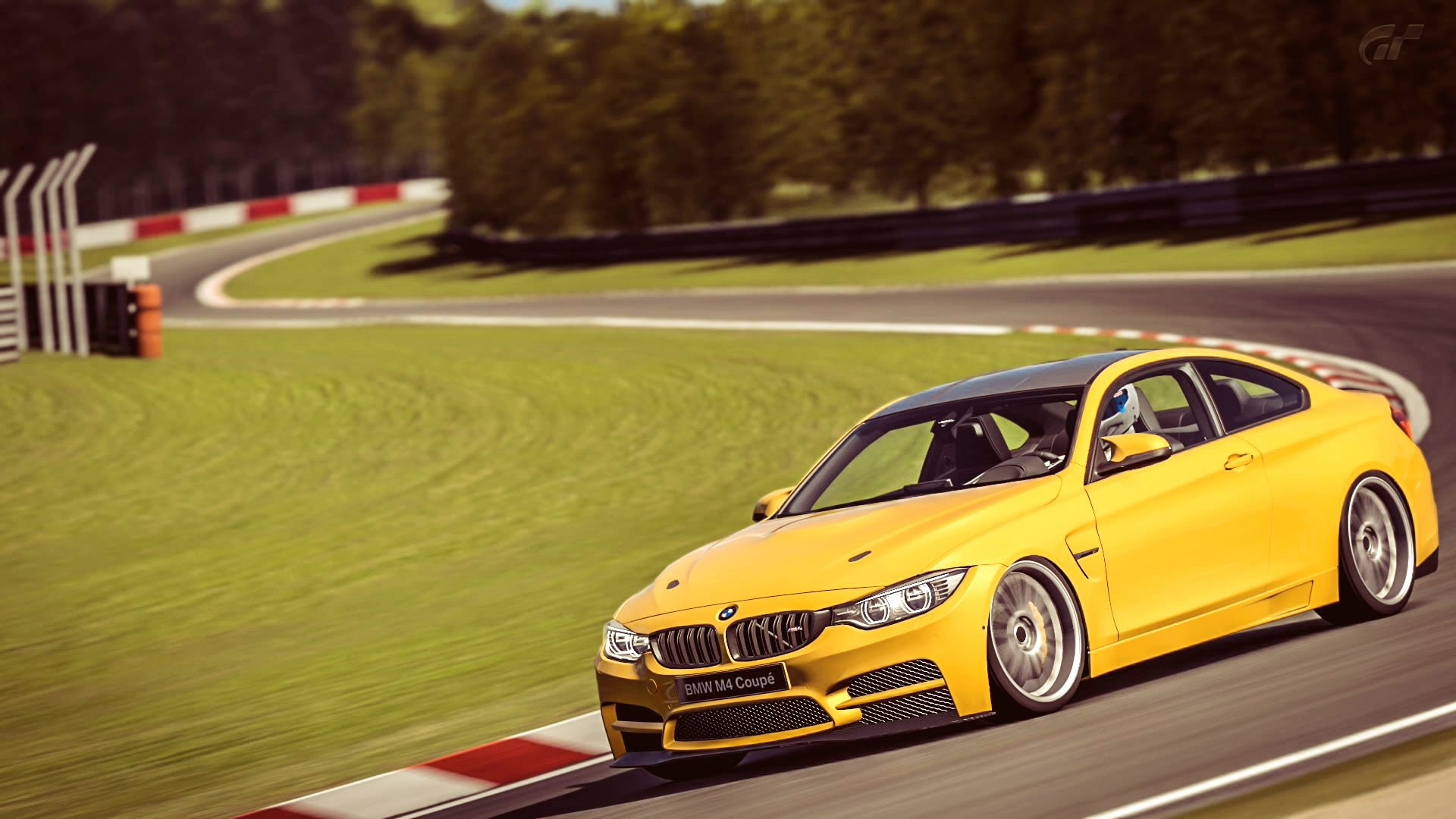 BMW_M4_Nurb_4.jpg