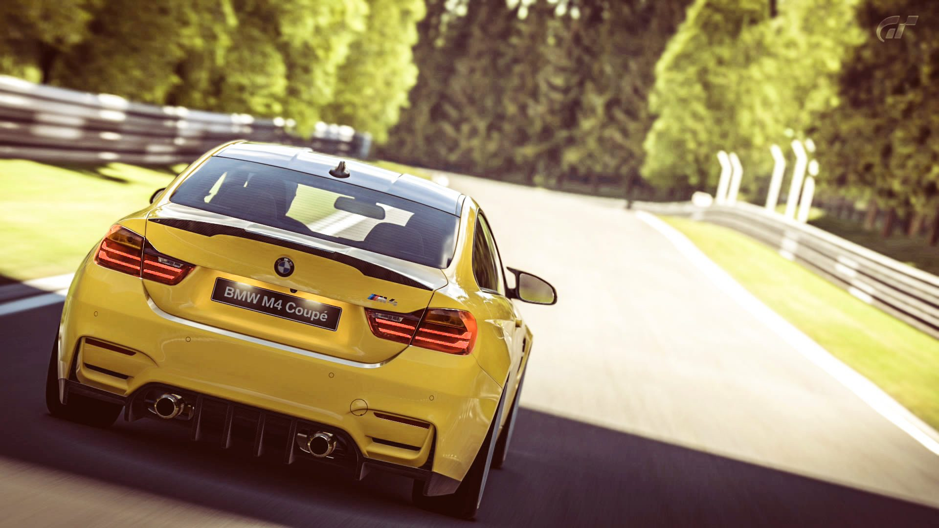 BMW_M4_Nurb_5.jpg