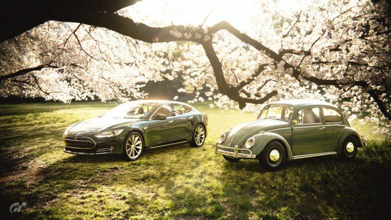 Bug & Model S.jpg