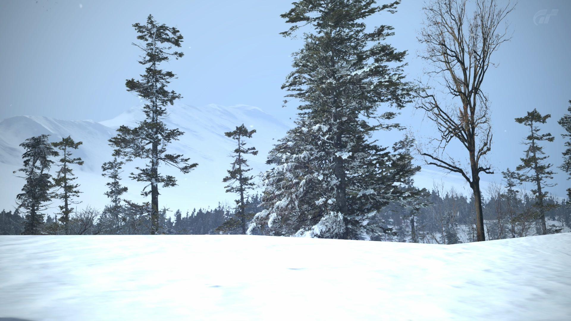Chamonix - scenery 22.jpg