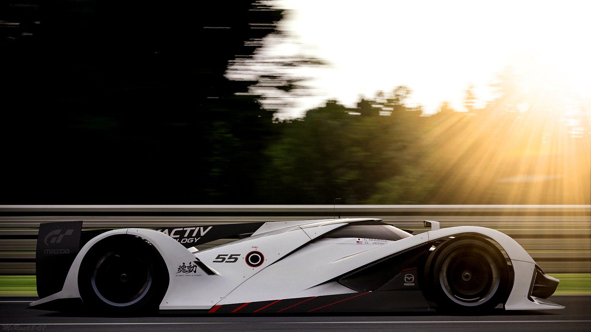 Circuit de la Sarthe 2013 LM55 3.jpg