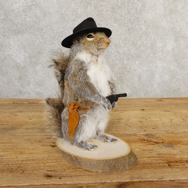 cowboy_squirrel_novelty_mount_for_sale_20730_the_taxidermy_store.jpg