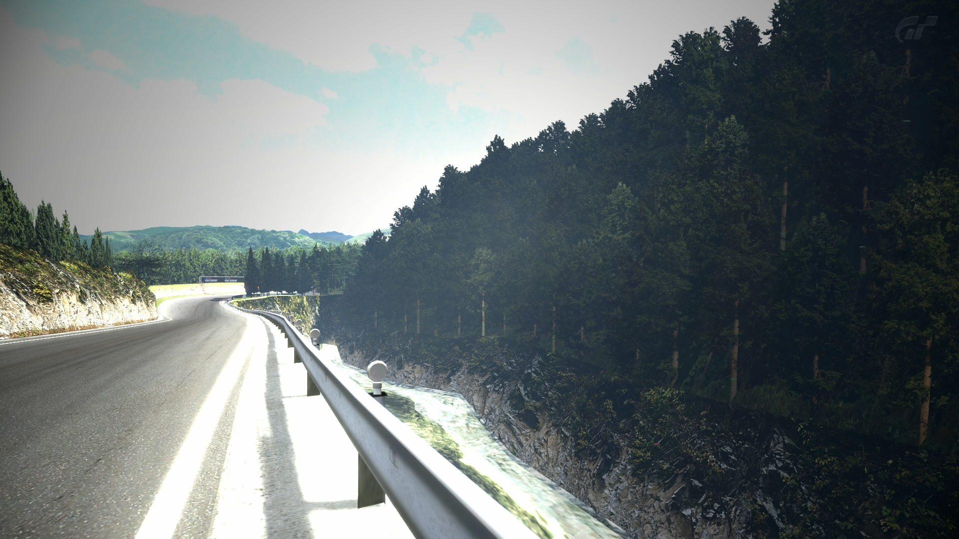 Deep Forest Raceway - scenery.jpg