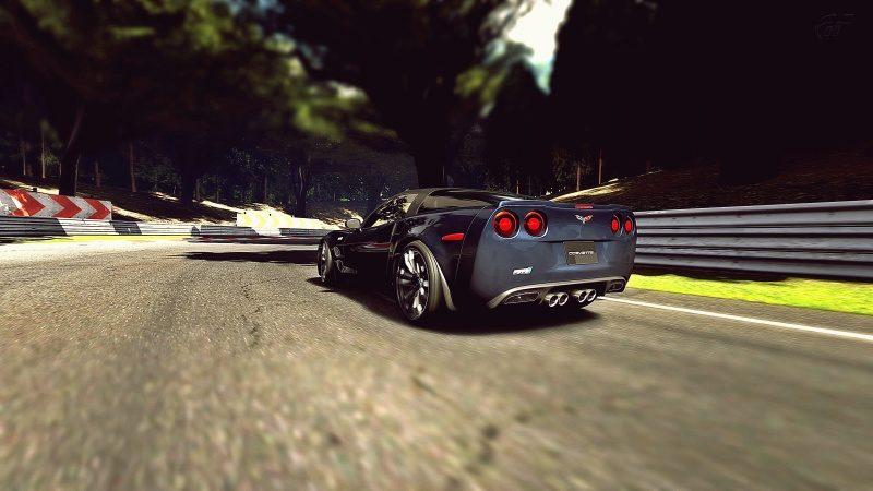 Deep Forest Raceway_1.jpg