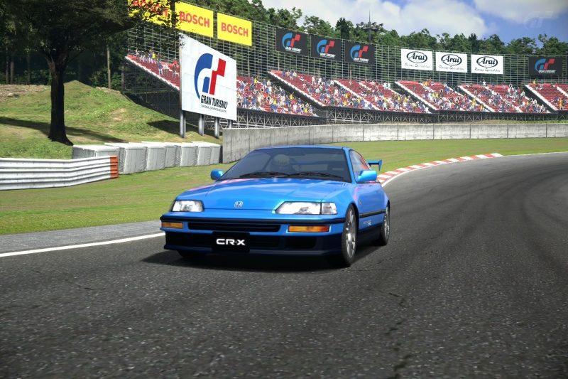 Deep Forest Raceway_2.jpg