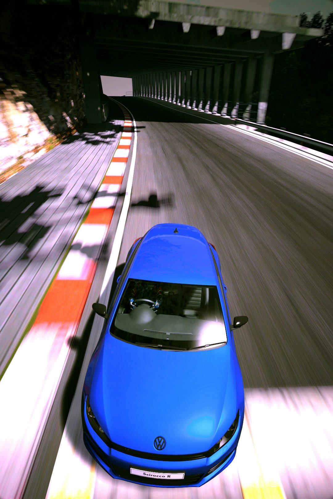 Deep Forest Raceway_3.jpg
