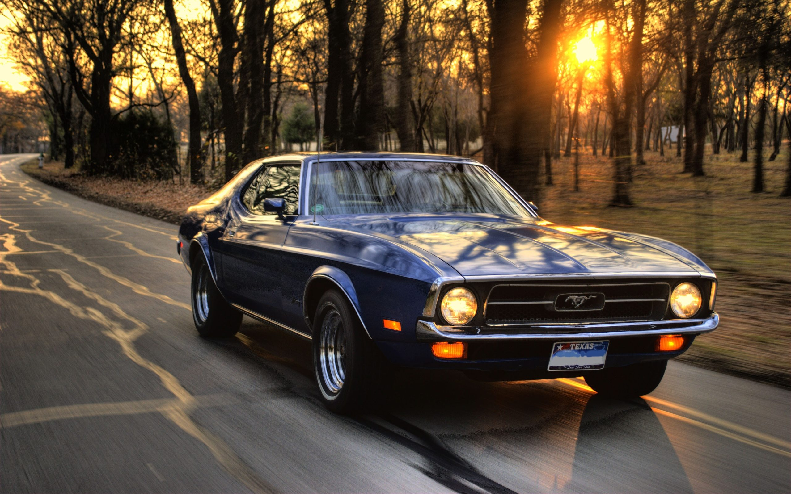 Ford-Mustang-speed-at-sunset_2560x1600.jpg