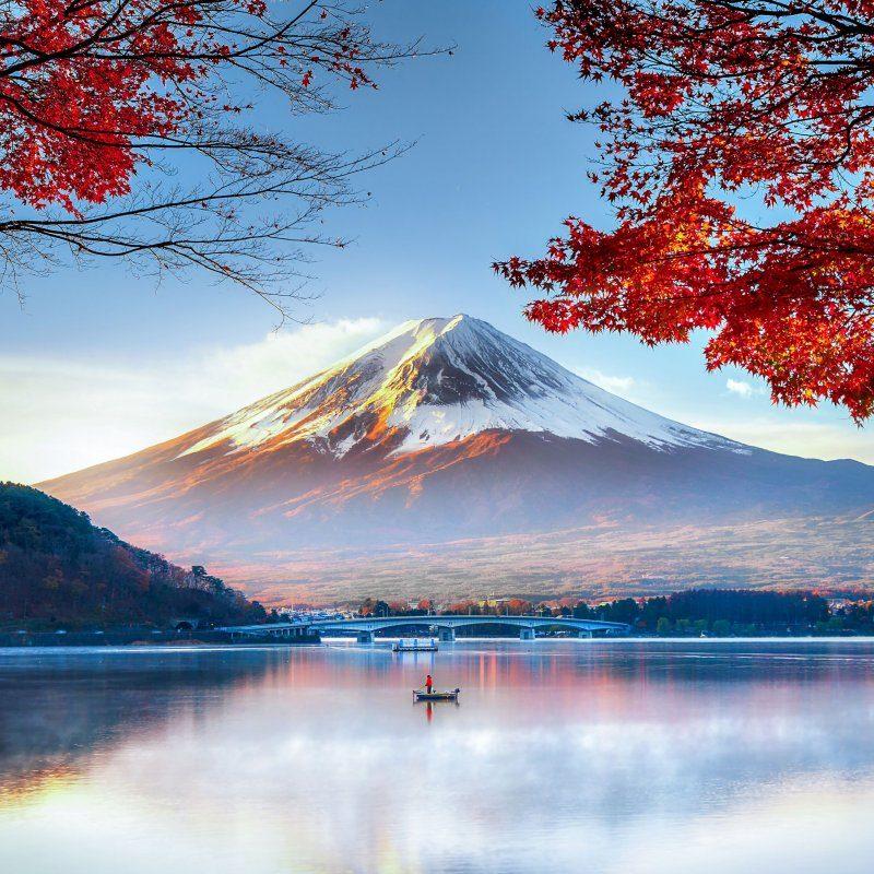 fuji-mountain-in-autumn-822273028-5a6a8a9c3418c600363958d3.jpg