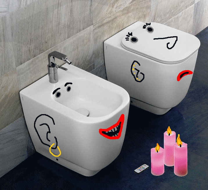 happy bidet and unhappy wc.png