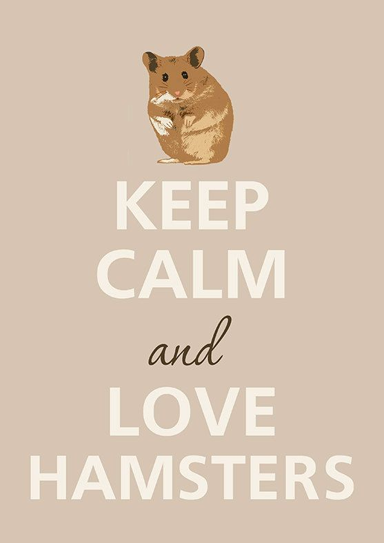 keep-calm-love-hamsters.jpg