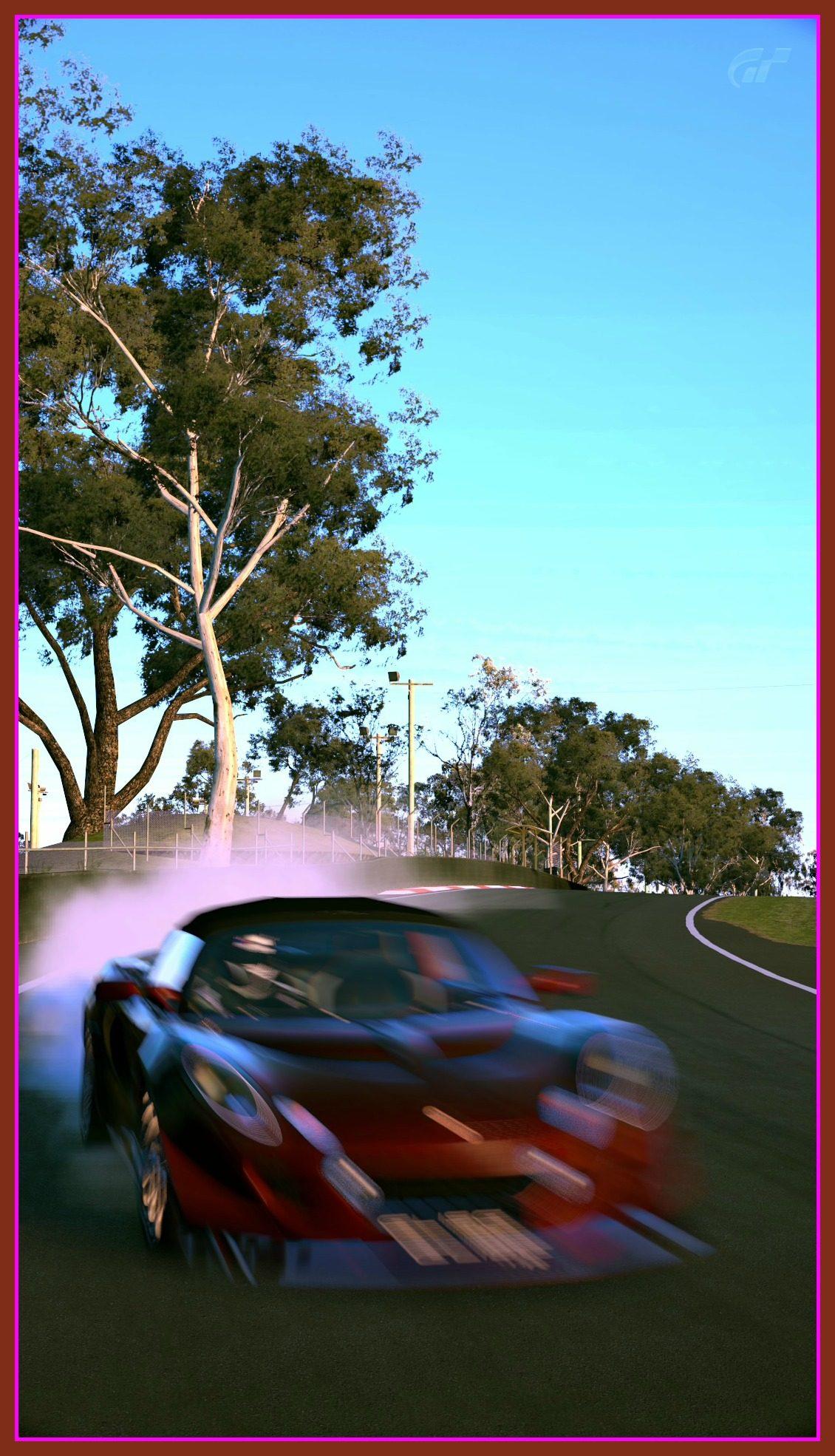 Mount Panorama Motor Racing Circuit_1b.jpg