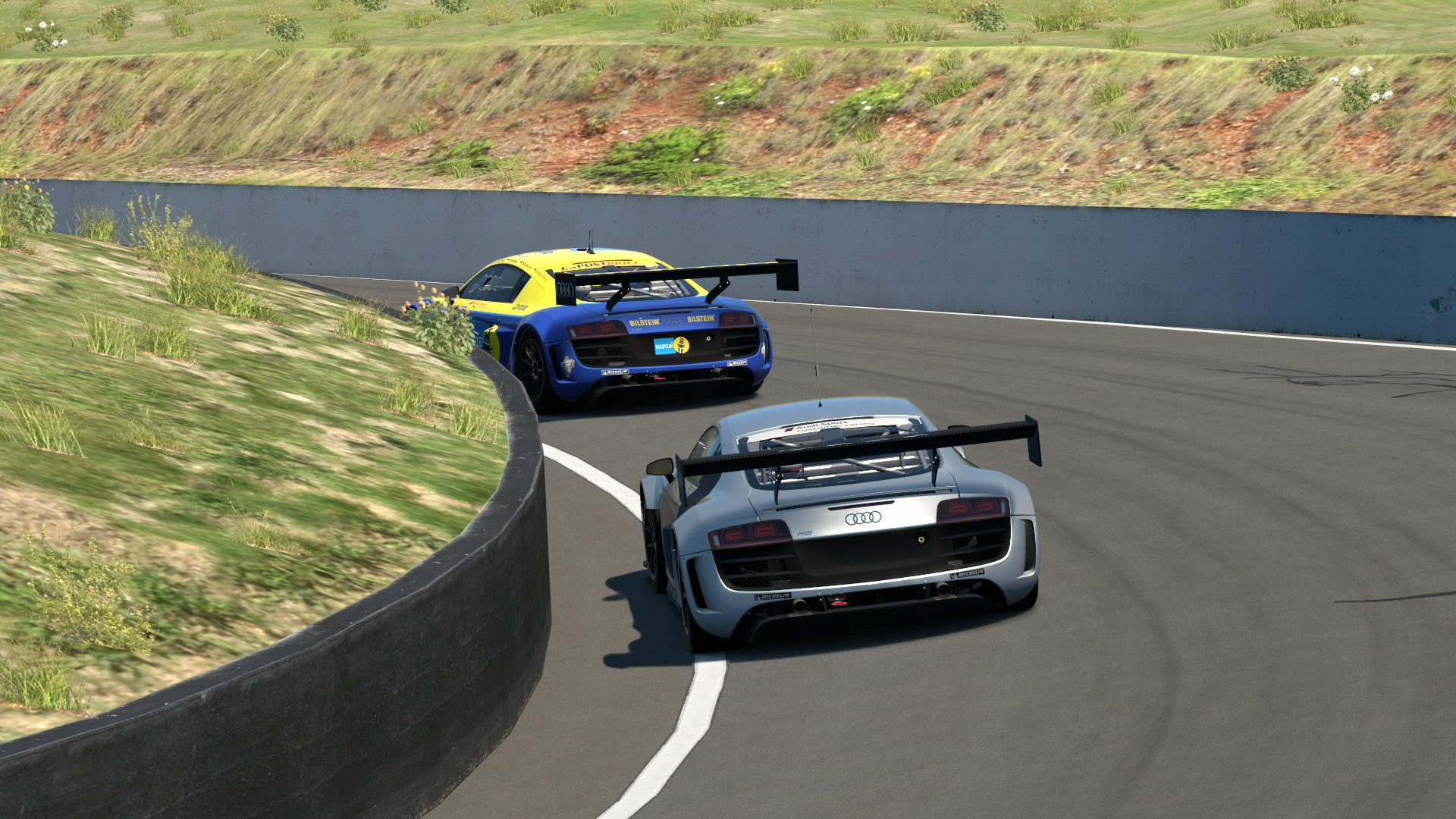 Mount Panorama Motor Racing Circuit_2 (2).jpg