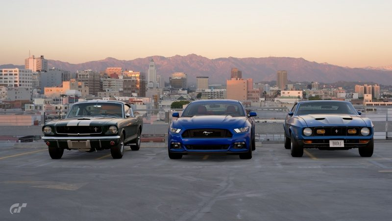 Mustangs in city outskirts.jpg