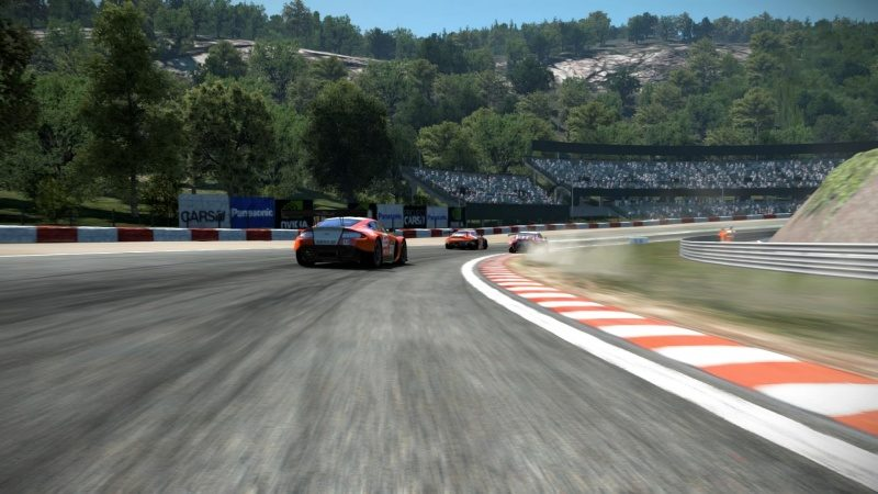 Project CARS_20150729170203.jpg