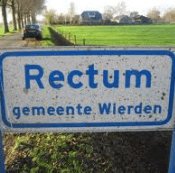 Rectum.png