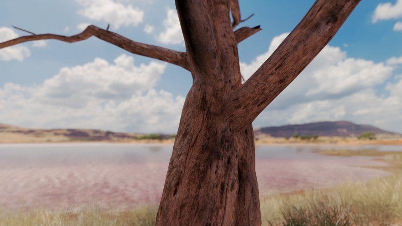 Scenery Tree detail_1 FH3.jpg