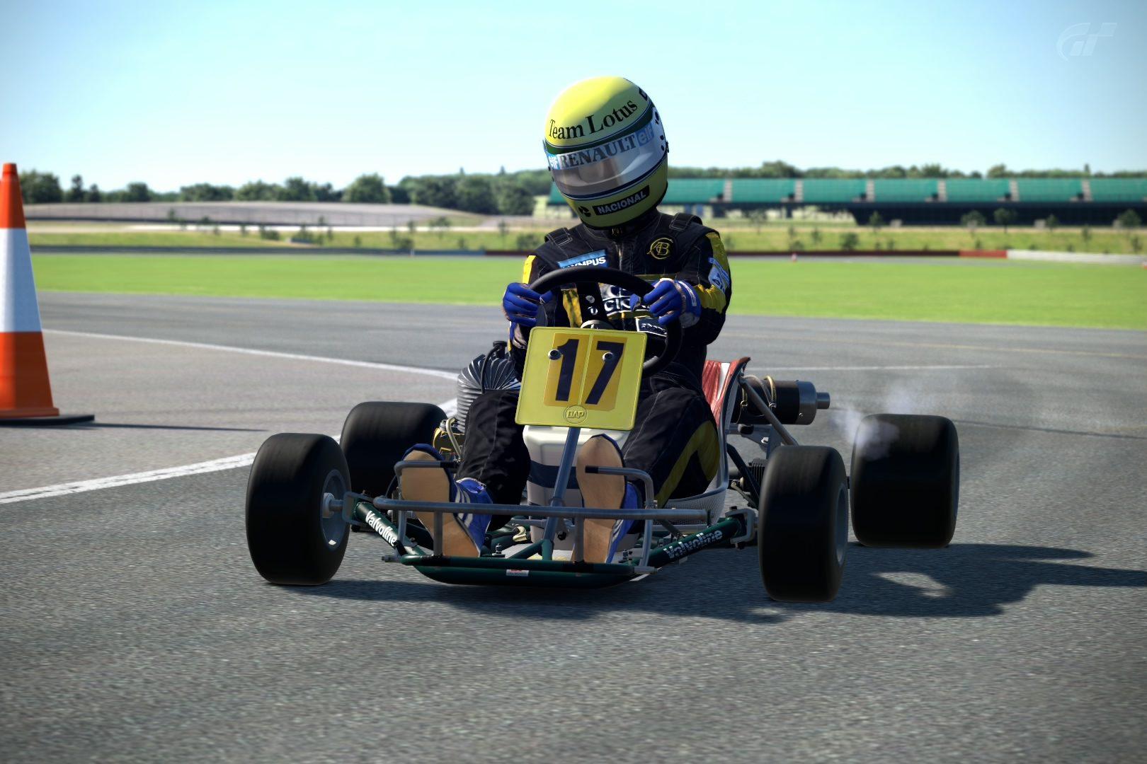 SennaKartImg2.jpg