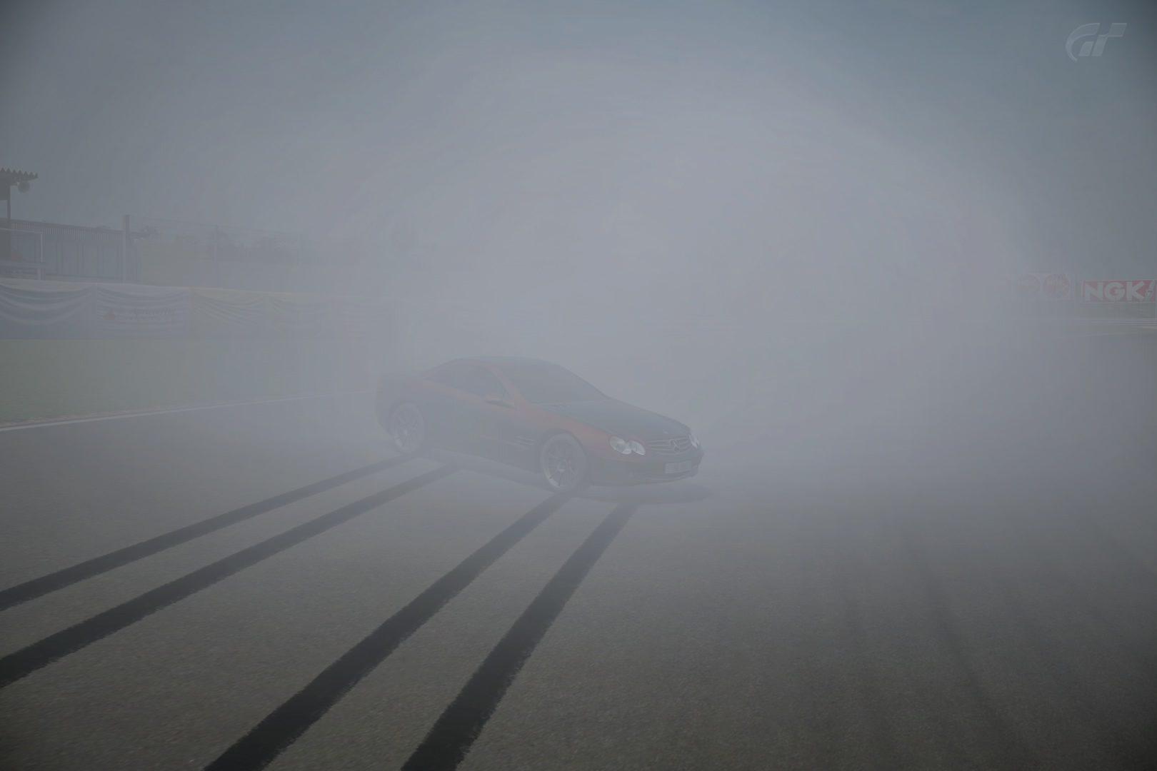 SL500 Smokey.jpg