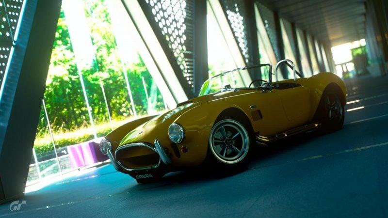 The Cobra's Beauty.jpg