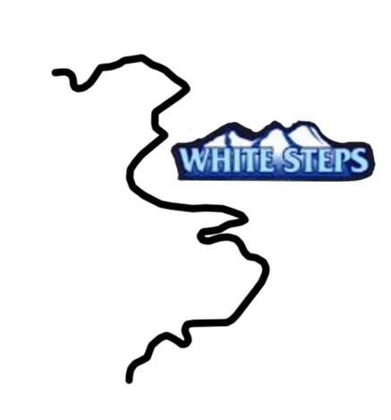 white_steps.png
