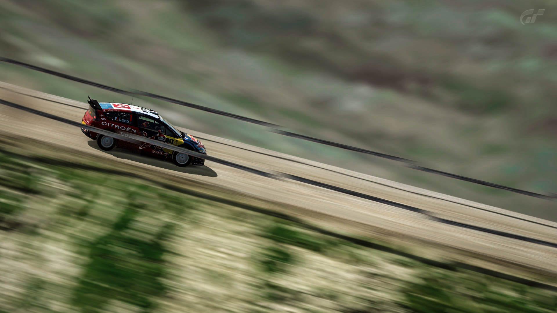 WRC_GT6_15.jpg