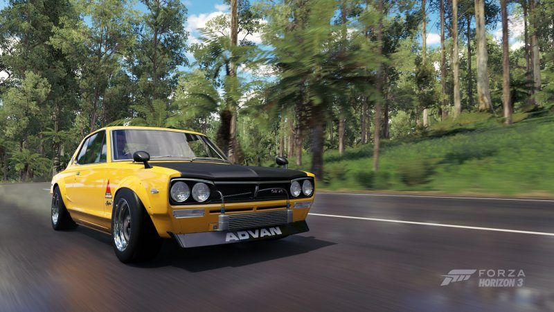 yellowfever.jpg