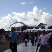 aston martin goodwood festival of speed gallery 2014 (16)
