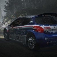 WRC 5 Unleash the Driver-1