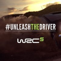 WRC 5 Unleash the Driver-4